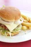 Burger and Fries on a Plate Royalty Free Stock Photo