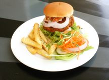 Burger and Fries on a Plate Royalty Free Stock Photos