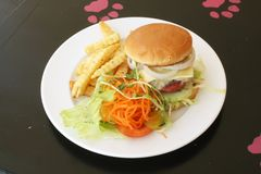 Burger and Fries on a Plate Royalty Free Stock Photography