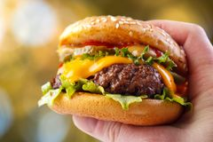 Burger in hand Stock Images