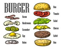 Burger ingredients on black background. Stock Image