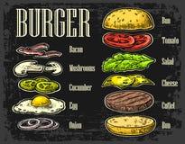 Burger ingredients on chalkboard. Burger ingredients on black background. Set  color painted components. Vector vintage engraving Illustration for poster, menu Stock Images