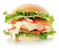 Burger isolated on the white background Royalty Free Stock Images