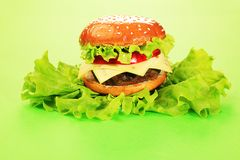 Burger on lettuce Royalty Free Stock Photos