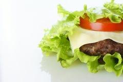 Burger lokalisiert lizenzfreie stockfotografie