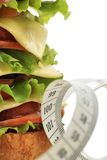 Burger lunch Royalty Free Stock Photos