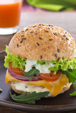 Burger . Royalty Free Stock Images