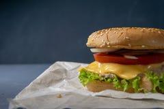 Burger mit Rindfleischpastetchen, Salat, einer Scheibe der Tomate und des Käses, Zwiebeln und Soße mit Paprika in einem gegrillte lizenzfreie stockbilder