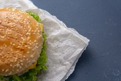 Burger mit Rindfleischpastetchen, Salat, einer Scheibe der Tomate und des Käses, Zwiebeln und Soße mit Paprika in einem gegrillte lizenzfreie stockfotos