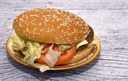 Burger mit Salat in einer schönen Platte stockfotografie