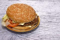 Burger mit Salat in einer schönen Platte lizenzfreie stockfotografie