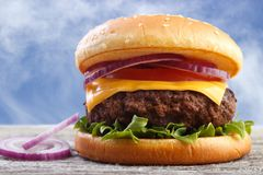 Burger with onion Stock Photos
