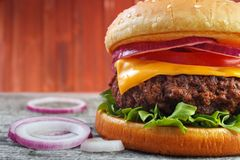Burger with onions Stock Photography