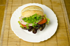 Burger on a plate Royalty Free Stock Photo