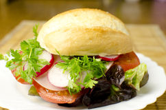 Burger on a plate Stock Image