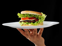 Burger on plate Royalty Free Stock Images