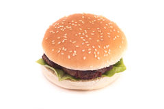 Burger with pork meat Royalty Free Stock Photo