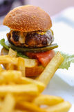 Burger and potato fry Stock Image