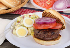 Burger and Potato Salad royalty free stock photos