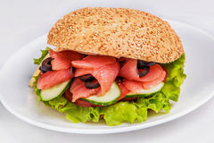 Burger with salmon. And salad on white dish Stock Photography