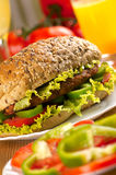 Burger sandwich Stock Image