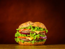 Burger Sandwich with Meat and Vegetables stock photography