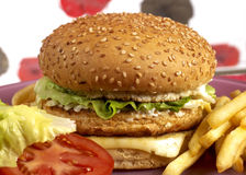 Burger series Royalty Free Stock Image