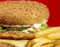 Free Burger Series Stock Photography - 4834952