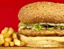 Free Burger Series Stock Image - 4835071