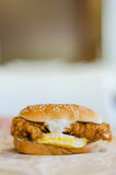 Burger. Special double beef and egg burger royalty free stock images