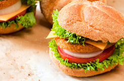 Burger time. Close up to fishburger and fresh vegetables Stock Image