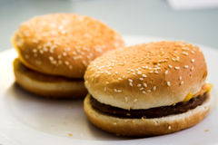 Burger uniformity. Two identical burgers royalty free stock photos