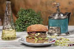 Burger With Vegetables Stock Photography