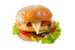 Burger on white Royalty Free Stock Photography