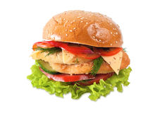 Burger on white Royalty Free Stock Images