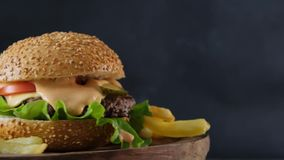 Burger With French Fries Stock Image