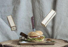 Burger on a wooden background. Burger and spices on a wooden background stock image