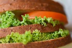 Burgerbrotnahaufnahme nach Hause machte köstliche geschmackvolle Nahrung lizenzfreies stockbild