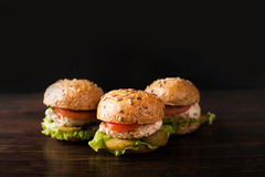 burgers τρία στοκ εικόνα