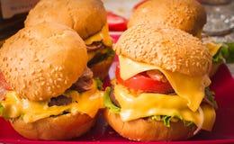 burgers Στοκ Εικόνα