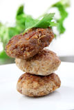 Burgers , cutlets Royalty Free Stock Photo