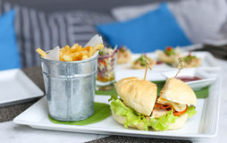 Burgers with french fried or chips Royalty Free Stock Photo