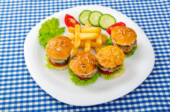 Burgers with french fries Stock Photography