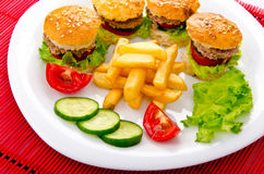 Burgers with french fries Stock Photos