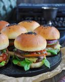 Burgers of home cooking Stock Image