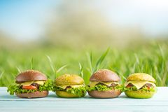 Burgers, under the warm sun, in the blossoming spring gardens. Picnic concept, summer and rest.  royalty free stock photo