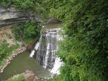 Burgess Falls Imagens de Stock