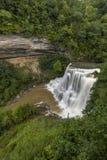 Burgess High Falls arkivbilder
