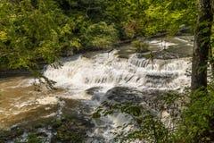 Burgess Upper Falls royaltyfri fotografi