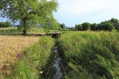 Burggraben Ooser Landgraben, Fluss durch Sandweier, Bezirk von Baden-Baden, mit Brücke, Niedrigwasser, trockenes Flussbett lizenzfreie stockfotografie